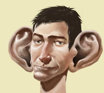 По форме ушей, размеру и цвету
