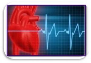 Боремся с аритмией. Укрепляем сердечную мышцу