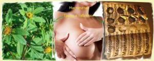 Рецепты лечения мастопатии травами