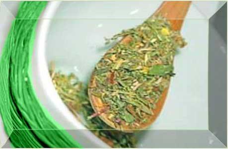 Лечение желудка и кишечника травами