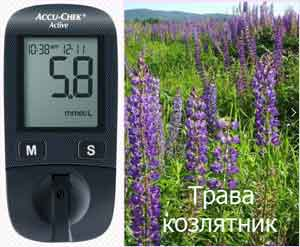 Полезные растения при диабете