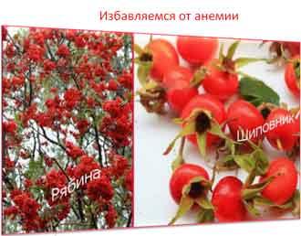 Лечение анемии домашними средствами