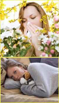 прогнать аллергию